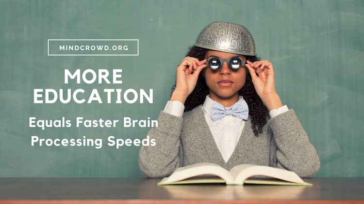 More education equals shorter RT or faster brain processing speed.